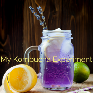 fermented foods reduce anxiety